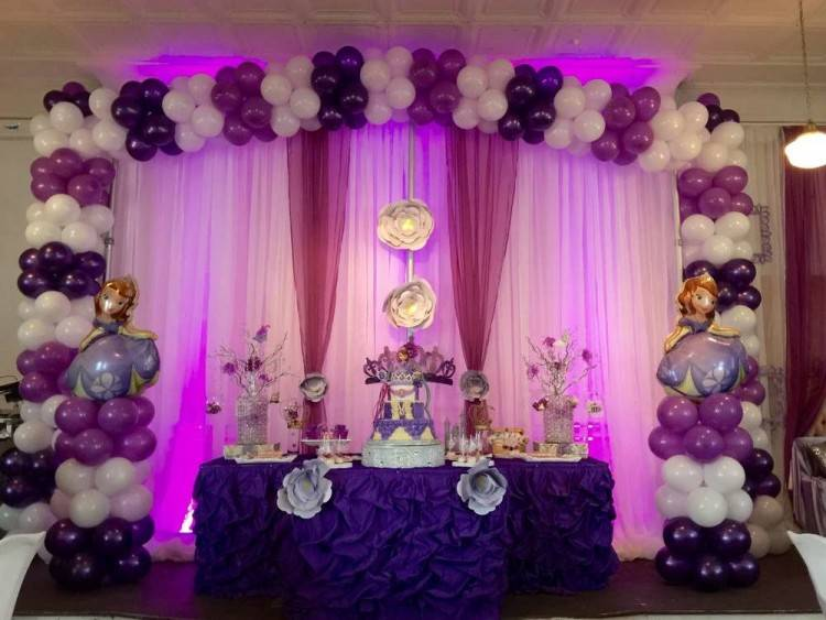 Color: Disney Sofia the First  Party Supplies