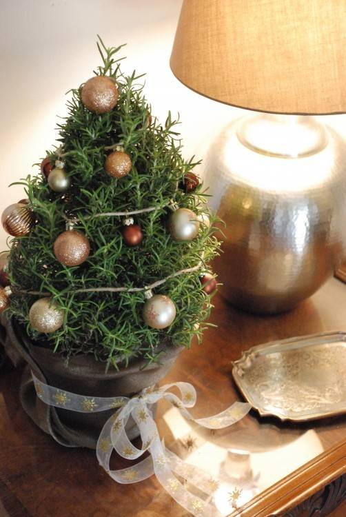 You can decorate your Christmas tree