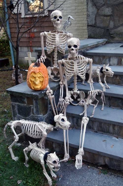 Full Size of Halloween Decoration Best Place To Buy Outdoor Halloween  Decorations Halloween Decorations For Inside