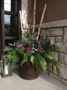 Full Size of Christmas Decorations: 7 Best Outdoor Flowers Plants Images On  Pinterest Fresh Decorating